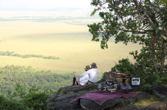 Enjoy a delectable picnic on the savannah