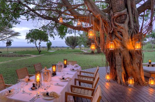 Enjoy dinner in the African bush under the stars