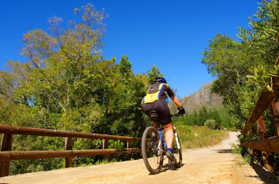 Immerse yourself in the spectacular scenery as you cycle through the Cape Winelands
