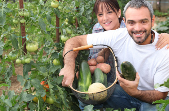 Visit historic Babylonstoren for an authentic farm experience