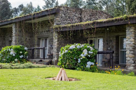 Gorillas Nest Lodge