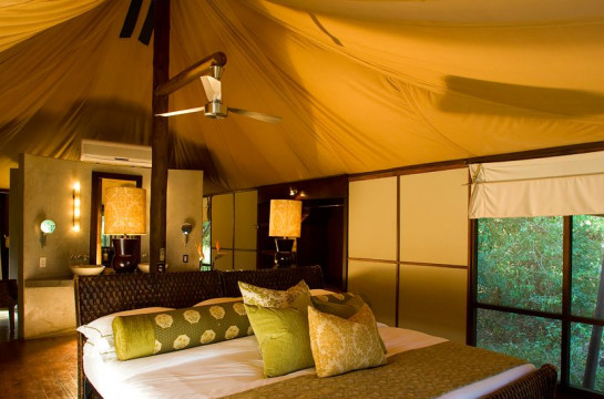 Ngala Safari Lodge and Tented Camp, Timbavati region