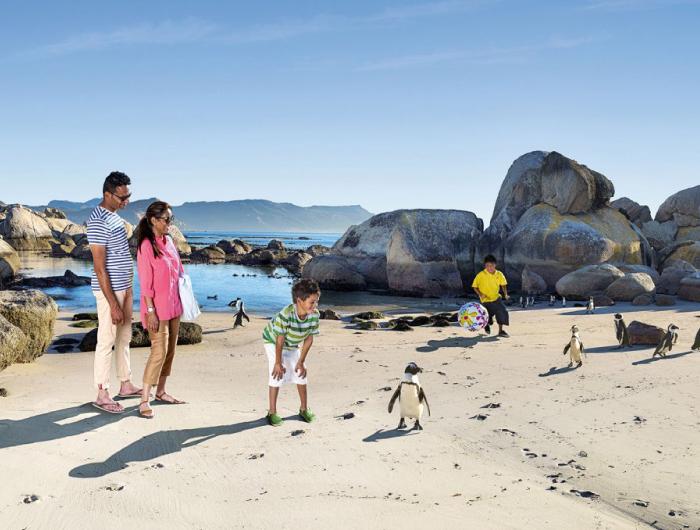 Viaje Familiar a Sudáfrica: Ciudad del Cabo y Safari